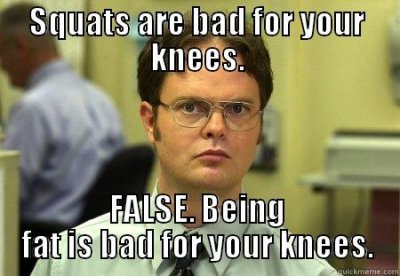 squat_knees