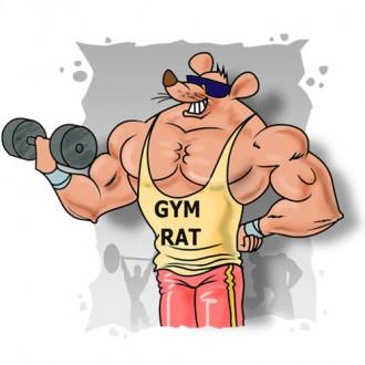 gym_rat