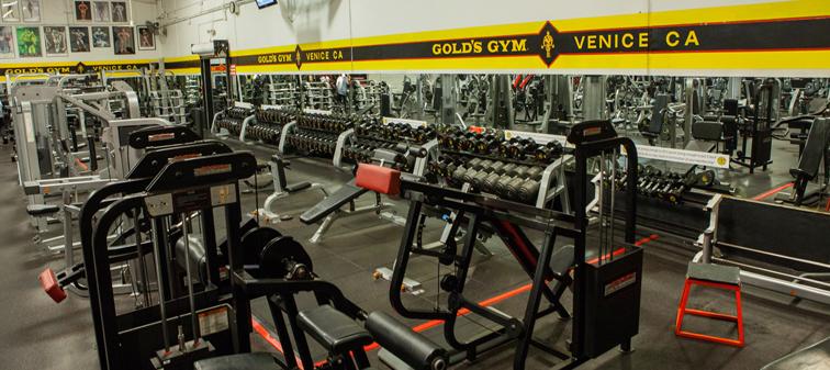ab-golds-gym-1